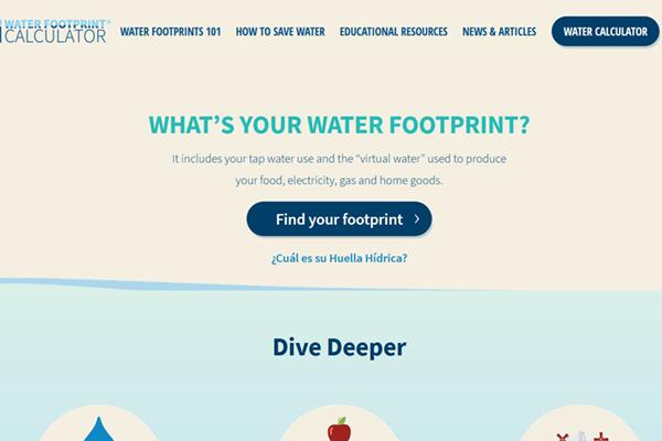 screenshot of the water footprint site